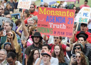 Ký sự Organic – Kỳ 7: Nỗi ám ảnh GMO và chất độc da cam