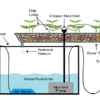 2 mô hình trồng rau thủy canh tại nhà phổ biến cung cấp thực phẩm sạch cho gia đình