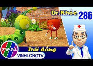 THVL | Dr. Khỏe – Tập 286: Trái hồng – Phần 3